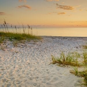 Florida Beach Art